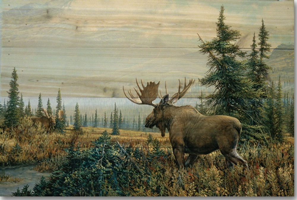 "Moose Wood Wall Art ""Showdown""   Wood Graphixs   WGISHD2416"