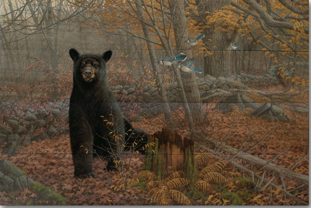 "Black Bear Wood Wall Art ""Stone Wall"" 