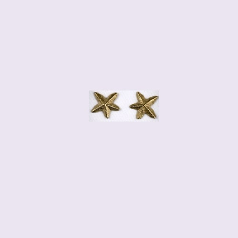 Starfish 14K Gold Post Earrings | Kabana Jewelry | GE382