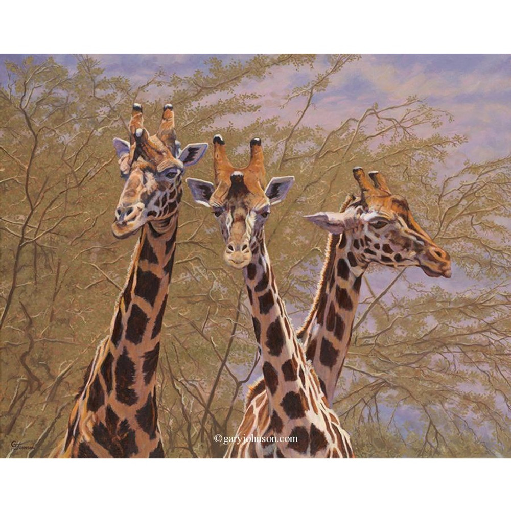 - Giraffe Print The Three Amigos Gary Johnson