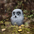 Owl Black Crystal Sculpture | 34052 | Mats Jonasson Maleras-3