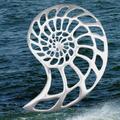 Nautilus Shell Pewter Pin -2