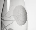 Aspen Leaf Engrave Glass Carafe | Rolf Glass | 702797