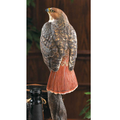 Red-tailed Hawk Sculpture | 6842062501 -1