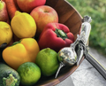 Garden Veggie Salad Serving Bowl | Vagabond House | G212CL
