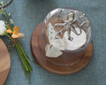 Octopus Cheese Board with Glass Dome | Vagabond House | VHCO236KP