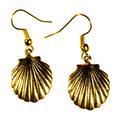 Scallop Shell Antique Gold Brass Wire Earrings | Elaine Coyne Jewelry | ECGOCG485E