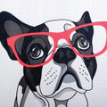 Dog Print Fabric Shower Curtain   Cool Frenchie   Moda at Home