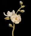 Magnolia Flower Statement Brooch | Nature Jewelry | Michael Michaud | 5988BZ