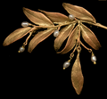 Leaf Tapestry Brooch | Nature Jewelry | Michael Michaud | 5991BZ