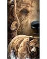 Ten Brown Bears Stainless Steel 17oz Travel Mug | The Mountain | 5934821 | Brown Bear Travel Mug