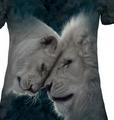 White Lions Love Women's Tri-Blend V-neck T-Shirt   The Mountain   415937   Lion T-Shirt