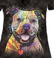 Beware of Pit Bulls Women's Tri-Blend V-Neck T-Shirt | The Mountain | 413796 | Pit Bull T-Shirt