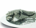 Alligator Stainless Steel and Pewter Serving Tray | Vagabond House | J811AM