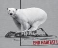 Polar Bear Habitat Trucker Hat   The Mountain   765573   Polar Bear Hat