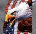 Patriotic Scream Eagle Unisex Cotton T-Shirt   The Mountain   106436   Eagle T-Shirt