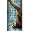 Sloth Yoga Stainless Steel 17oz Travel Mug   The Mountain   59648203661   Sloth Travel Mug