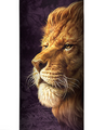 Lion King of the Savannah Stainless Steel 17oz Travel Mug | The Mountain | 5964051 | Lion Travel Mug