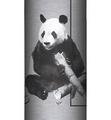 Panda Habitat Stainless Steel 17oz Travel Mug | The Mountain | 5955791 | Panda Travel Mug