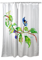 "Bird Shower Curtain ""Bird & Blackberries"" 