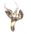 Springbok Animal Mask Recycled Metal Wall Art | Mbare | RCTM-SP
