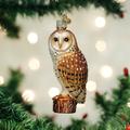 Barn Owl Glass Ornament | OWC16118