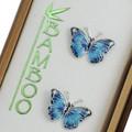 Blue Morpho Butterfly Cloisonne Post Earrings   Bamboo Jewelry   bj0168sppe -2