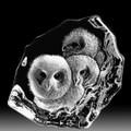 Owlets Crystal Sculpture | 33537 | Mats Jonasson Maleras
