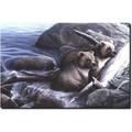 "Bear Print ""The Watch"" | Kevin Daniel | KD130 -2"