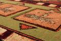 Rainbow Trout Area Rug | United Weavers | 512-25429-5x7