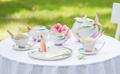 Butterfly Teapot | xp1878 | Franz Porcelain Collection