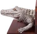 Alligator Bookends | Vagabond House | VHCJ771A