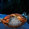 Crab Salad Serving Bowl   Vagabond House   O212CL-1