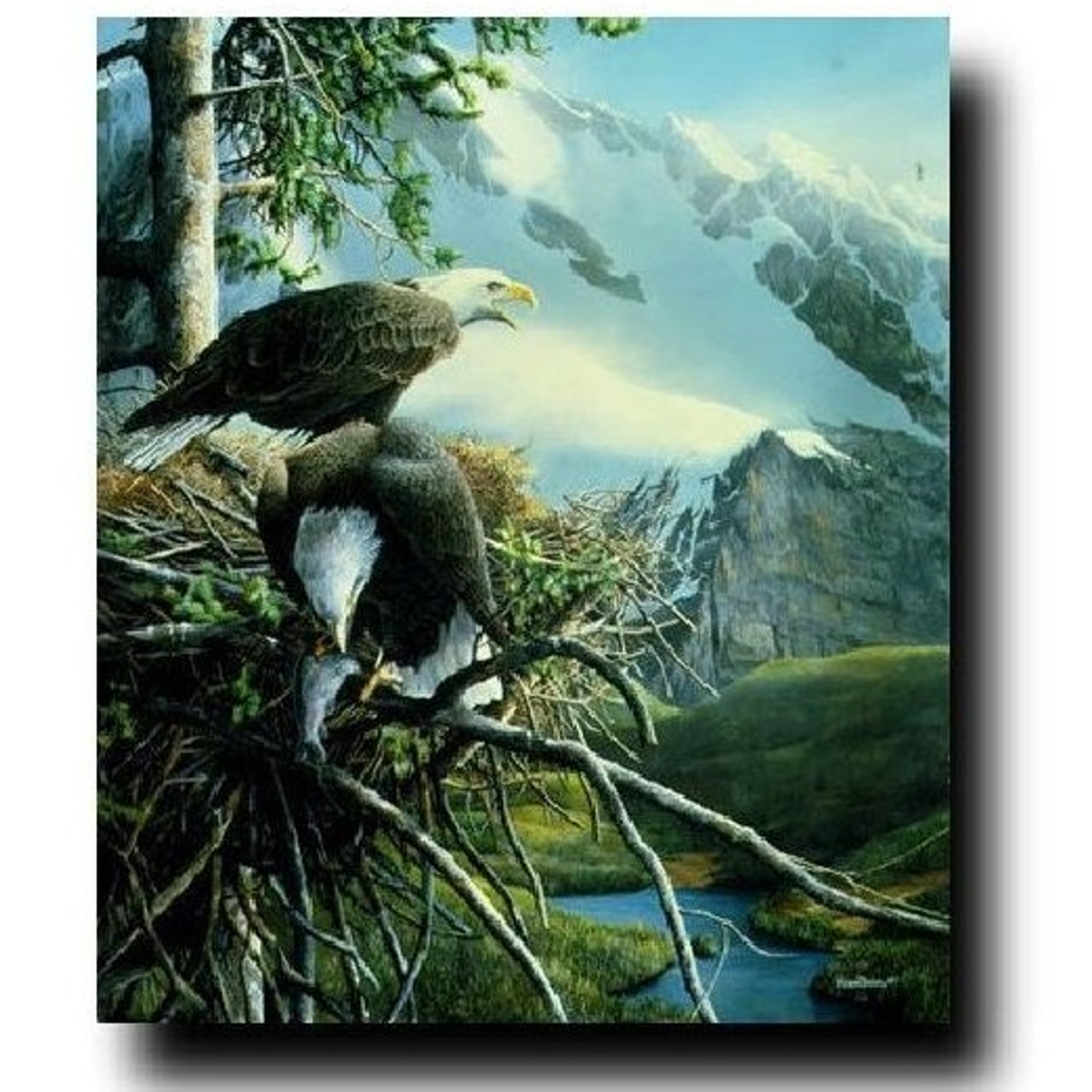 WILDLIFE ART PRINT Eagles with Lighthouse by Kevin Daniel Seascape Poster 11x14