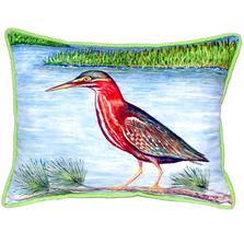 Green Heron Indoor Outdoor Pillow 20x24 | Betsy Drake | BDZP958