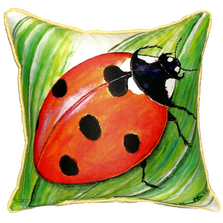 Ladybug Indoor Outdoor Pillow 22x22 | Betsy Drake | BDZP457