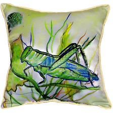 Grasshopper Indoor Outdoor Pillow 22x22 | Betsy Drake | BDZP458