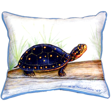Spotted Turtle Indoor Outdoor Pillow 20x24 | Betsy Drake | BDZP286