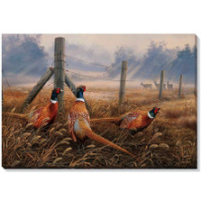 Pheasant Canvas Wall Art | Wild Wings | F593492619