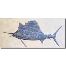 Sailfish Bas Relief Ltd Edition Wall Art | Rod Zullo