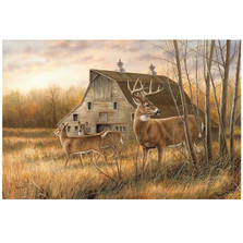 Whitetail Deer Canvas Wall Art | Wild Wings | F593119465