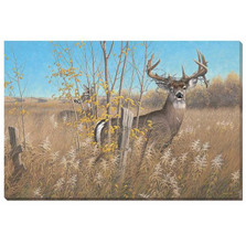 Whitetail Deer Canvas Wall Art | Wild Wings | F780579965