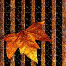 Maple Leaf Artisanal Wooden Jigsaw Puzzle | Drain Leaf Puzzle | Zen Art & Design | ZADMAPLELEAFDL