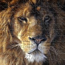 Lion Artisanal Wooden Jigsaw Puzzle   Zen Art & Design   ZADLION