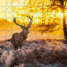Deer Artisanal Wooden Jigsaw Puzzle | Red Deer at Dawn | Zen Art & Design | ZADREDDEERDAWN