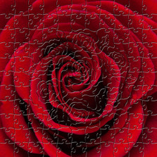 Red Rose Artisanal Wooden Jigsaw Puzzle | Zen Art & Design | ZADREDROSE