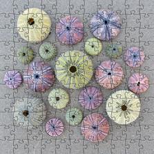 Sea Urchin Artisanal Wooden Jigsaw Puzzle | Zen Art & Design | ZADSEAURCHIN