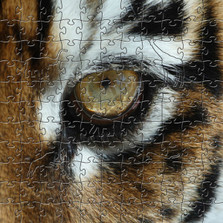 Tiger Eye Artisanal Wooden Jigsaw Puzzle | Zen Art & Design | ZADTIGEREYE
