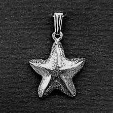 Starfish Pewter Small Pendant