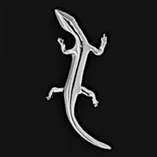 Gecko Pewter Pendant/Pin